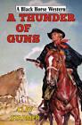 A Thunder of Guns by Clay Starmer (Hardback, 2013)