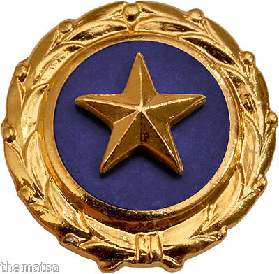 GOLD STAR FAMILY MEMBERS KILLED MILITARY LAPEL PIN
