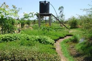 Permaculture-Vol-3-of-3-30-Book-CDROM-Water-Harvesting-Irrigation-Hydro-Cattle