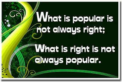 NEW SCHOOL CLASSROOM MOTIVATIONAL POSTER - What is Popular is Not Always Right;