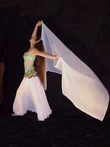 We3-Belly-Dance-Tribal-Ren-Faire-Gypsy-Special-Order-Chiffon-Skirt-amp-Veil-Set