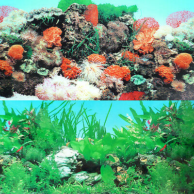 "9093  24"" x 60"" Fish Tank Background 2 Sided Reef Tropical Coral Aquarium"