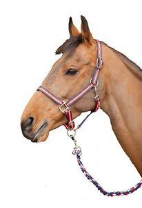 Red-white-blue-matching-headcollar-rope-set