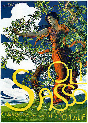 Lady Olive Oil Tree Sasso Italia Italy Italian Food Vintage Poster Repo FREE S/H
