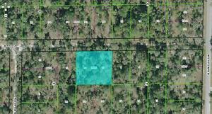 Florida-Lot-Land-Citrus-County-1-2-Acre-Buildable-No-Reserve