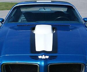 70-71-72-Pontiac-Trans-Am-Blue-White-Stripe-Decals-Kit