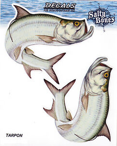 Tarpon-Decals-Bumper-Stickers-Right-Left-Facing-Gifts-Fishing-Men-Boys
