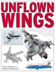 Unflown Wings by Sergey Komissarov, Gordon Yefim (Hardback, 2013)