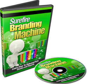 How-To-Rebrand-PLR-Ebooks-and-Reports-11-Part-Step-By-Step-Video-Course-on-1-CD