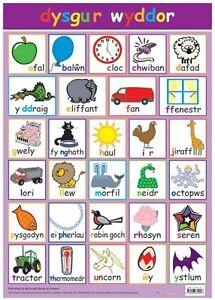 Educational-Poster-Welsh-Alphabet-dysgur-wyddor-0039