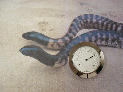 REPTILE Humidity / Hygrometer Gage for Incubator's and Enclosure's  60mm x 6mm