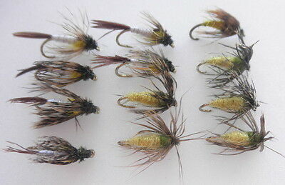Nymph.Trout Flis. 12 Mixed Caddis & Hatching Sedge - Mixed Size, Fishing Flies