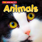 Animals by Rebecca Rissman (Hardback, 2013)