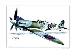 RAAF-SPITFIRE-FIGHTER-PLANE-WORLD-WAR-II-LIMITED-EDITION