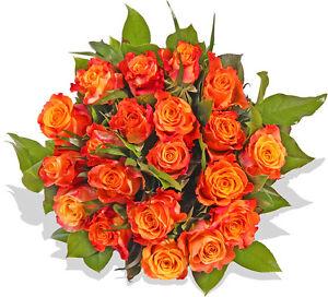 Blumenversand Blumenstrauss Rosenstrauss Gelb Rote Rosen Ebay