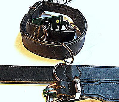 Hunter Lederhalsband Basic schwarz , Leder Hundehalsband Halsband, viele Größen