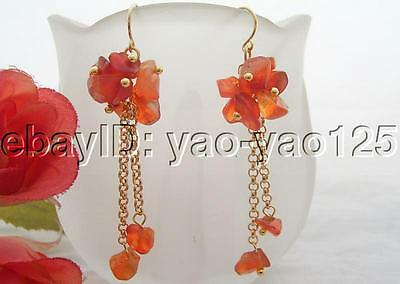 WOW!!! Natural Carnelian Earring-925 Golden Hook