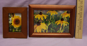 Vintage-Lot-of-2-Sunflower-Photos-in-Wood-Frames-Stained-Medium-Brown