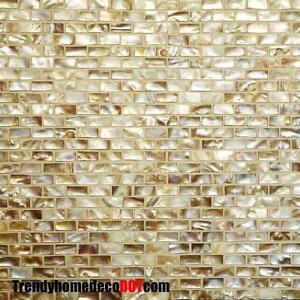 SAMPLE-Oyster-Natural-shell-mosaic-tile-backsplash-WALL