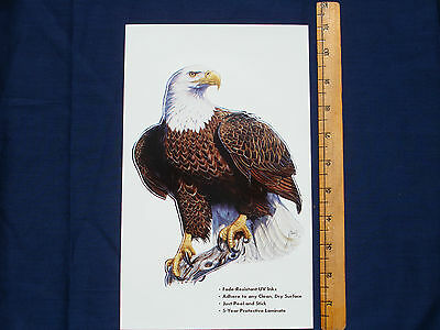 BALD EAGLE DECAL STICKER AL AGNEW - REVERSE IMAGE ALSO AVAILABLE
