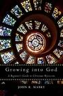 Growing into God: A Beginner's Guide to Christian Mysticism by John R. Mabry (Paperback, 2012)