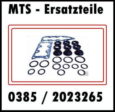 MTS Belarus 50 52 80 82 / T-150K T150K Steuerblock Steuerschieber Dichtungssatz