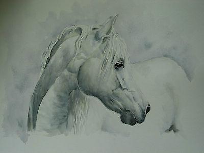 Affidabile S. Hermann/cavalli Nel Portrait-mostra Il Titolo Originale