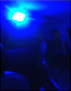 Holden-Commodore-VL-VN-VP-VR-VS-VX-XT-VY-VZ-Blue-LED-Interior-Dome-Light