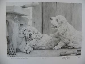 Clumber-Spaniel-Print-Mike-Sibley-Ltd-Edn-34-850