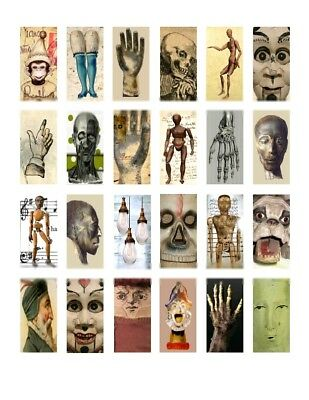 """Oddities Domino Art 1""""x2"""" Images Printed Collage Sheet"""