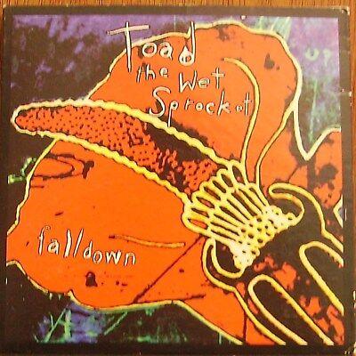 TOAD THE WET SPROCKET-FALLDOWN-2 TK CD IN CARD  SLEEVE