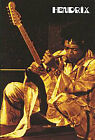 Jimi Hendrix - Band Of Gypsies - Live At The Fi (DVD, 2011)