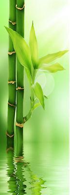 Sticker pour porte plane Bambou réf 516