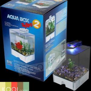 BETTA-FISH-TANK-AQUA-BOX-BOWL-LED-LIGHT-USB-POWERED-3-L