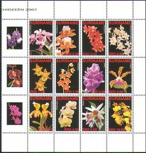 Surinam 2007 Orchids/Flowers/Plants/Nature/Horticulture 12v set blk (n34397)