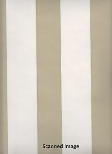 Stripe-Wallpaper-Taupe-Stripe-with-a-Little-Green-Sidewall-White-Background
