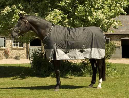 Rhinegold rug Thor 350G 1000 denier heavyweight horse turnout rug Rhinegold blanket 3 colours 2fbbcd