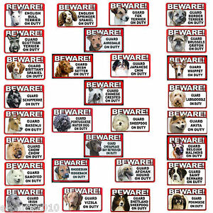 BEWARE-of-GUARD-DOG-Plastic-Sign-Poster-Party-Supplies-You-pick-your-BREED
