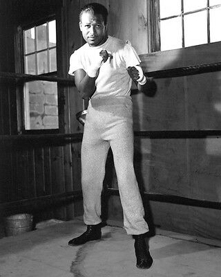 1956 Middleweight SUGAR RAY ROBINSON Vintage 8x10 Boxing Photo Training Print