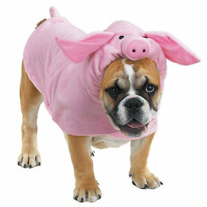 Casual-Canine-PIGGY-POOCH-Pet-Dog-Halloween-Costume-XS-S-M-L-XL