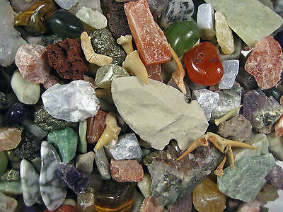 ROCK & MINERAL COLLECTION + 2 Easy Break Geodes Activity KIt 150+PCS ID Sheet