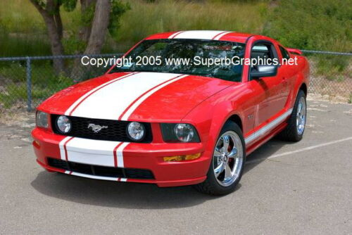 "05 06 07 08 09 Mustang 22/"" Wide Center Rally Stripe Stripes Decal Decals Graphic"