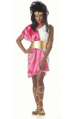 Greek Goddess Toga Woman Adult Costume Pink