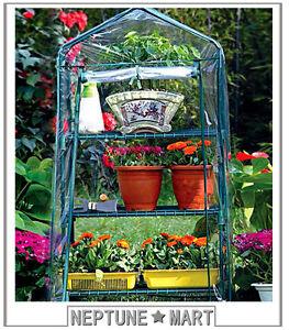 NEPTUNE-3-Tier-49-034-H-Mini-Portable-GREENHOUSE-Green-Grow-Hot-House-02-NIB