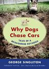 Why Dogs Chase Cars: Tales of a Beleaguered Boyhood by George Singleton (Paperback, 2013)
