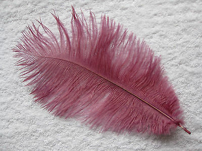 "Small Ostrich Feathers 2 x 10"" 25cm Many Colours Listed"