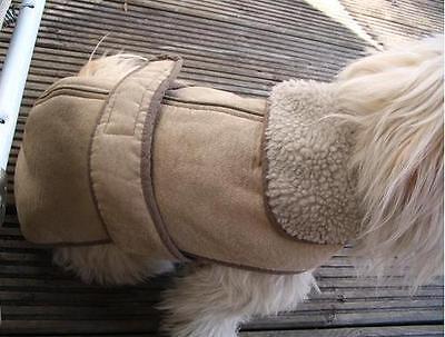 Hunde winter MANTEL WARM FutterTeddyfell Rückenlänge:30 45 50 55 60 70 80cm NEU