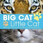 Big Cat, Little Cat by Lisa Regan (Hardback, 2012)