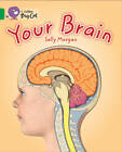 Your Brain: Band 15/Emerald by Sally Morgan (Paperback, 2013)