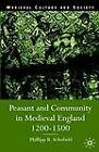 Peasant and Community in Medieval England, 1200-1500 by Phillipp R. Schofield (Hardback, 2002)